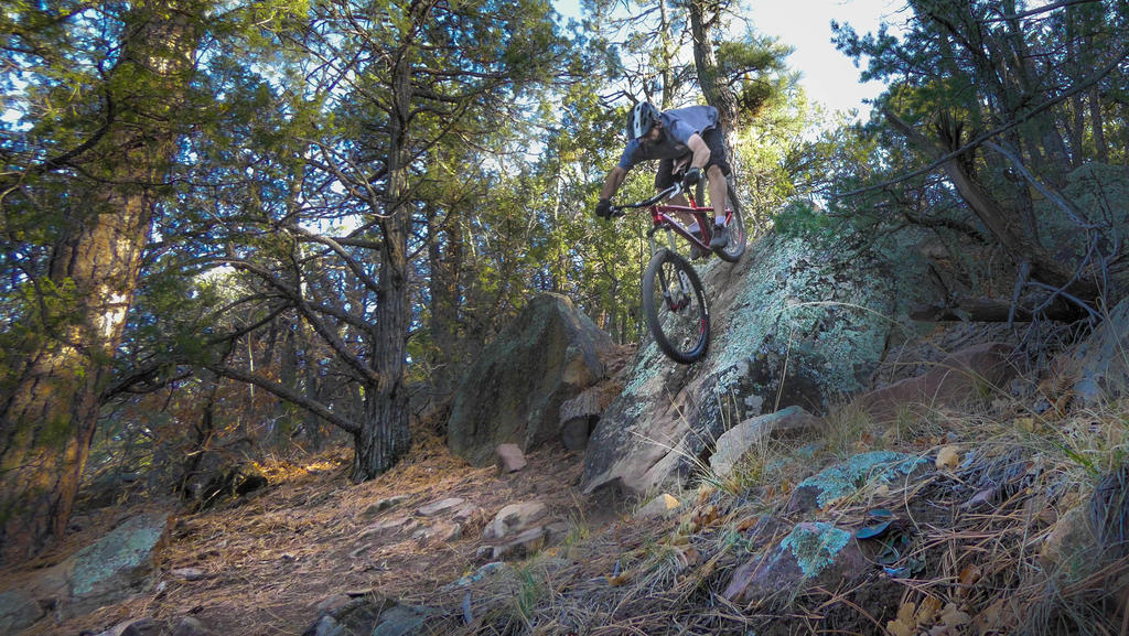 The All Mountain Hardtail Thread. Post up yours.-p1110565.jpg