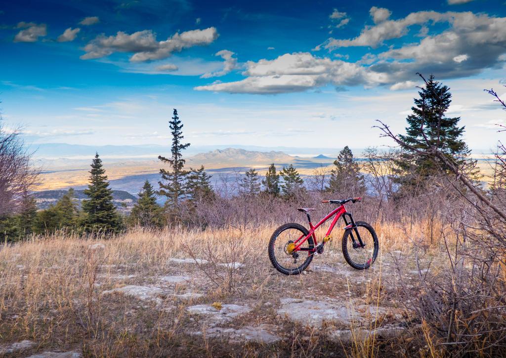 The NM Trail Pix Thread-p1110780.jpg