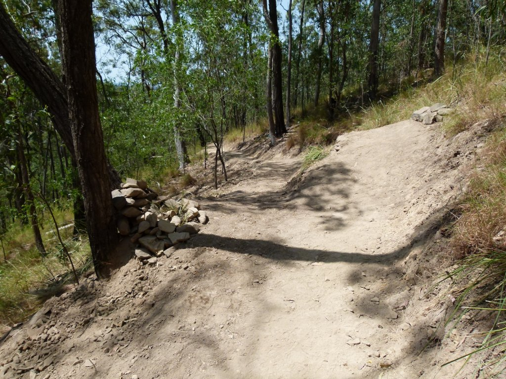 Medical information - New diagnosis for trail builders-p1120364.jpg