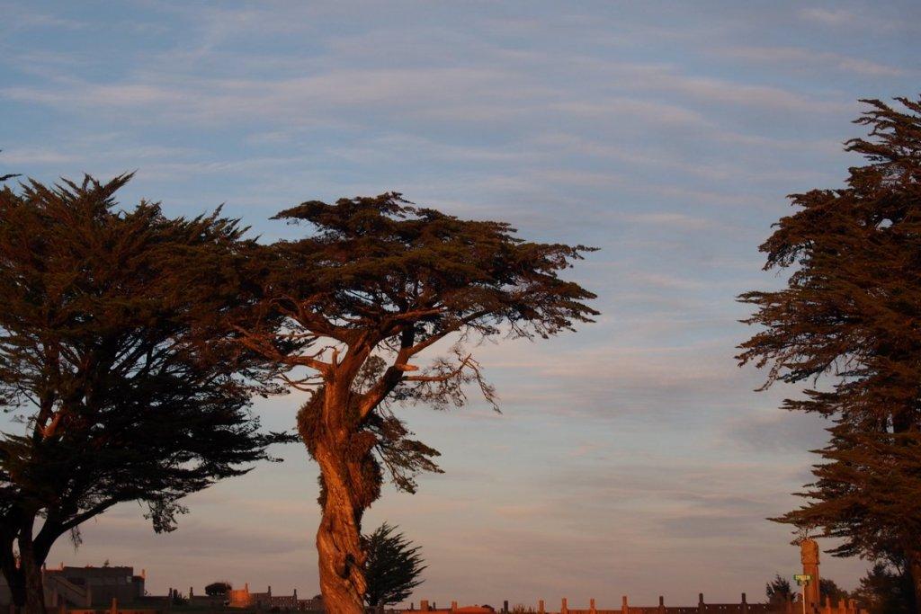 Sunrise or sunset gallery-p1280024.jpg