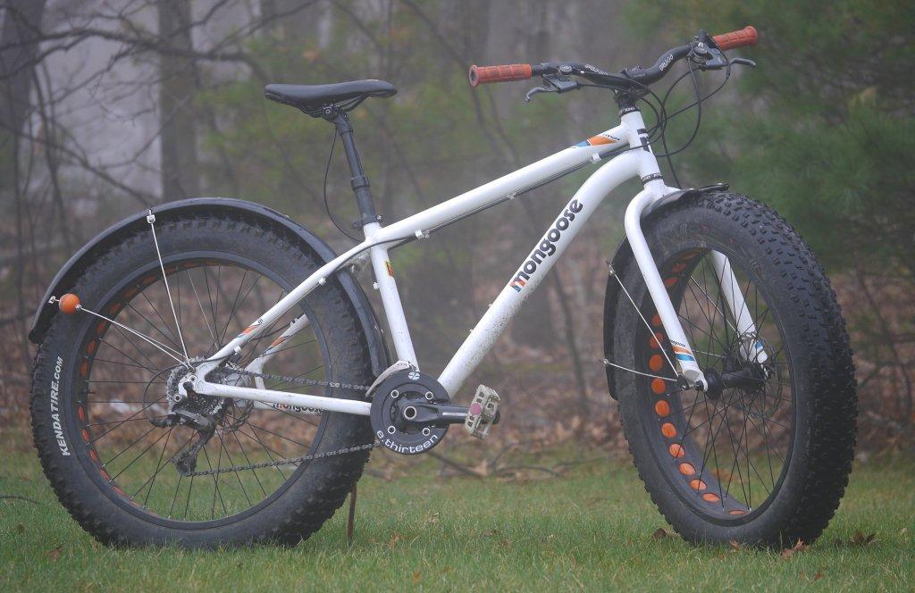 mongoose Vinson-p1530928_edited.jpg