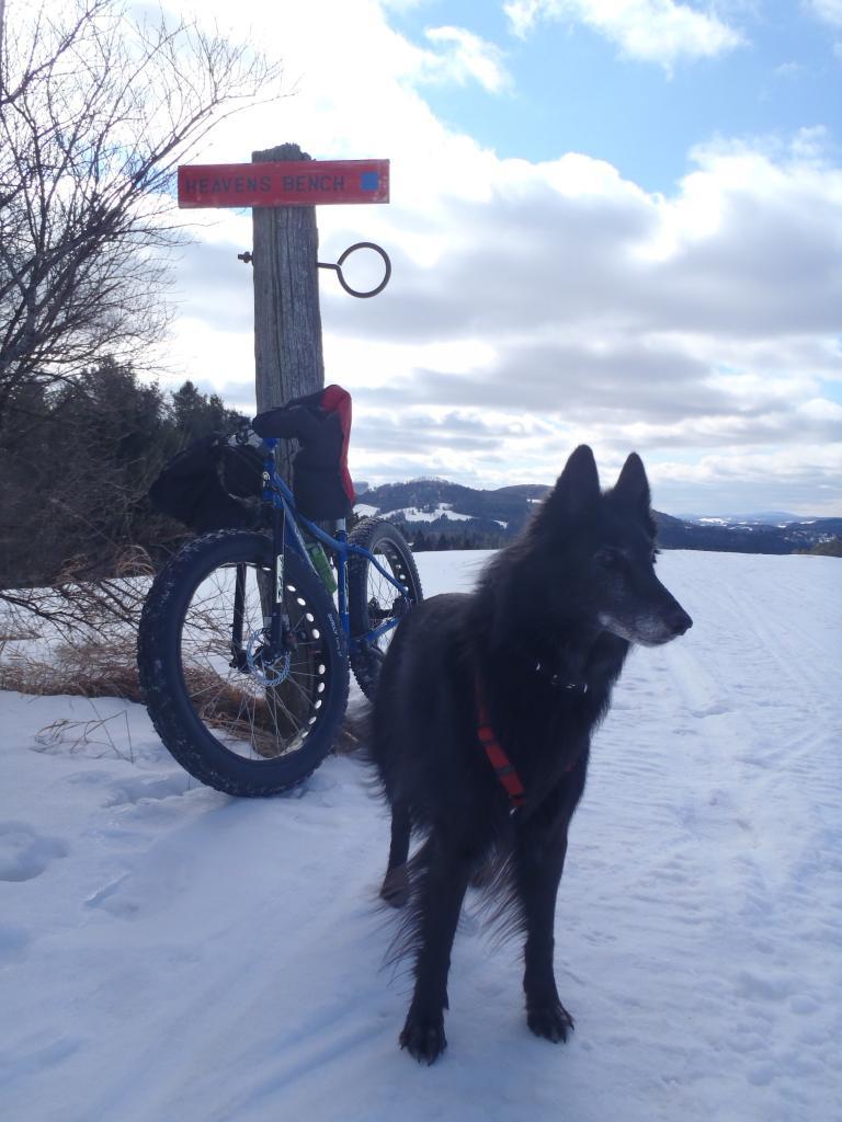Bike + trail marker pics-p2191547.jpg