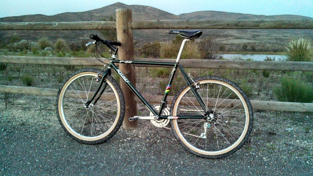 Ritchey P22 project...-p22-complete-6.jpg