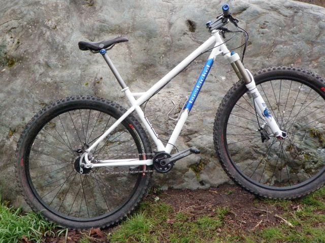 Want to build a 29er SS with a Hammerschmidt 22/36 crank, anyone done this?-p3260002.jpg