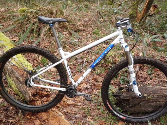 Want to build a 29er SS with a Hammerschmidt 22/36 crank, anyone done this?-p3260008.jpg