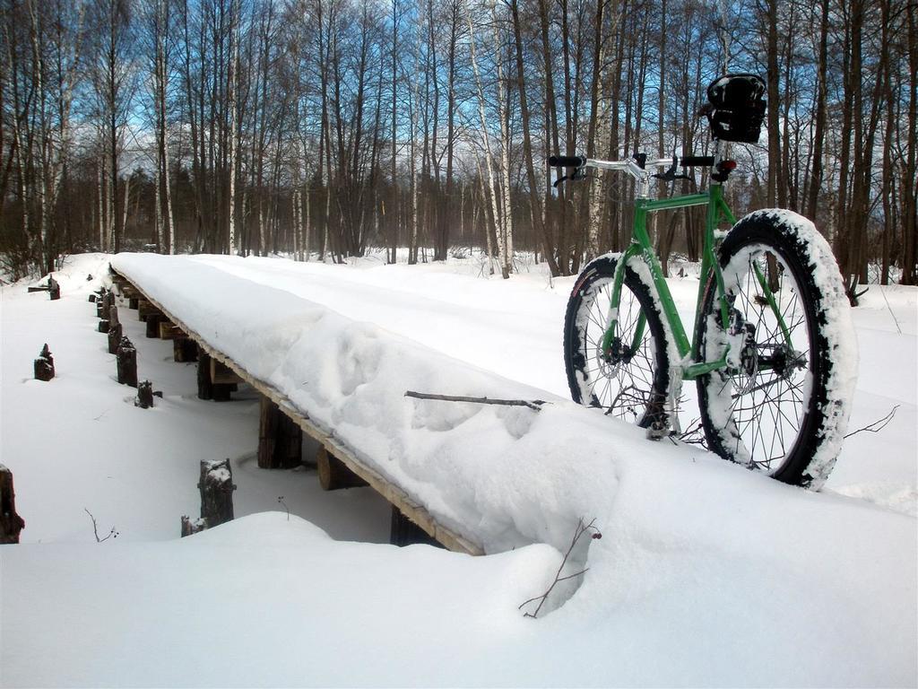 bike +  bridge pics-p3260208-large-.jpg