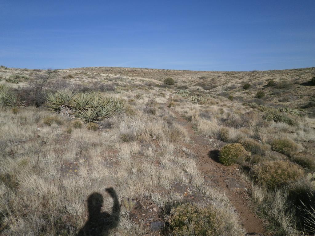 Black Canyon Trail Antelope to Bumble Bee-p3290014_zps9260b8d0.jpg
