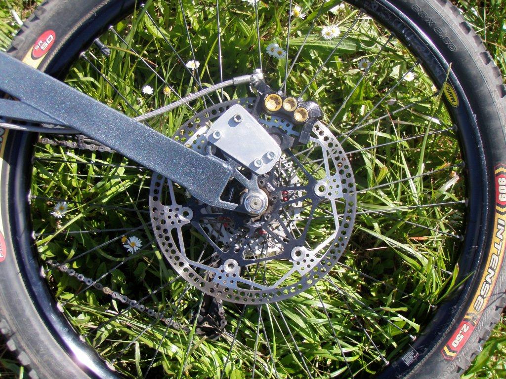 Tandem Disc Brake Thread-p5080122.jpg