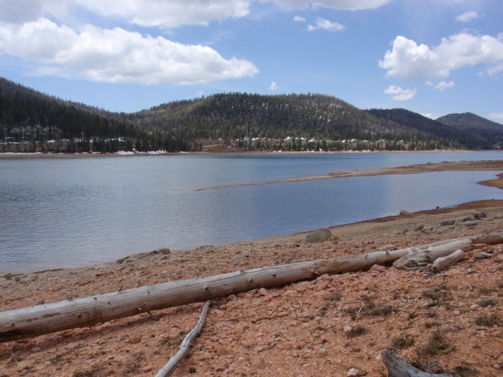 Virgin River Rim Trail/Navajo Lake - Ridable???-p5124701-large-.jpg