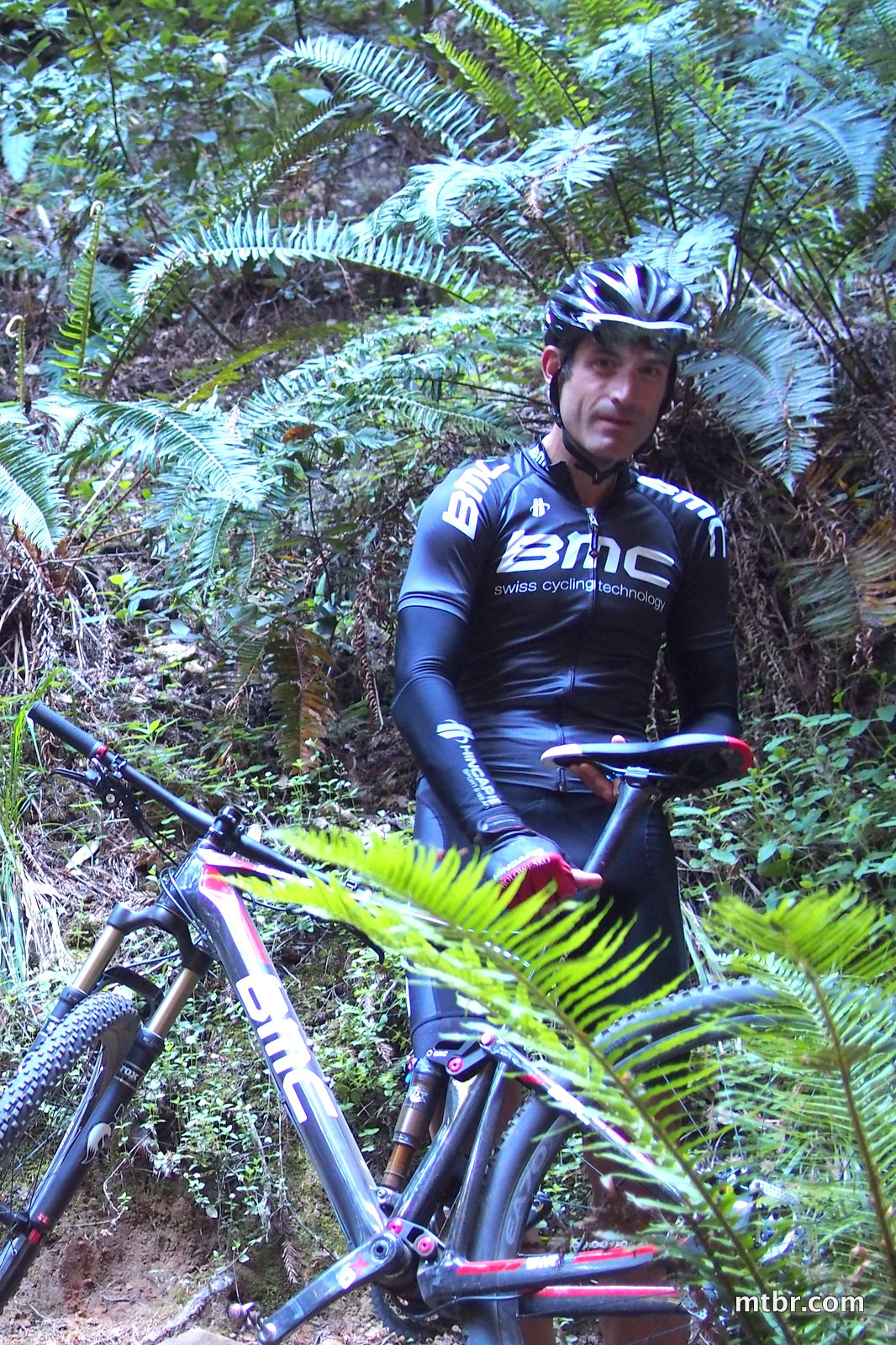 Hincapie in the fern redwood forest of Skeggs