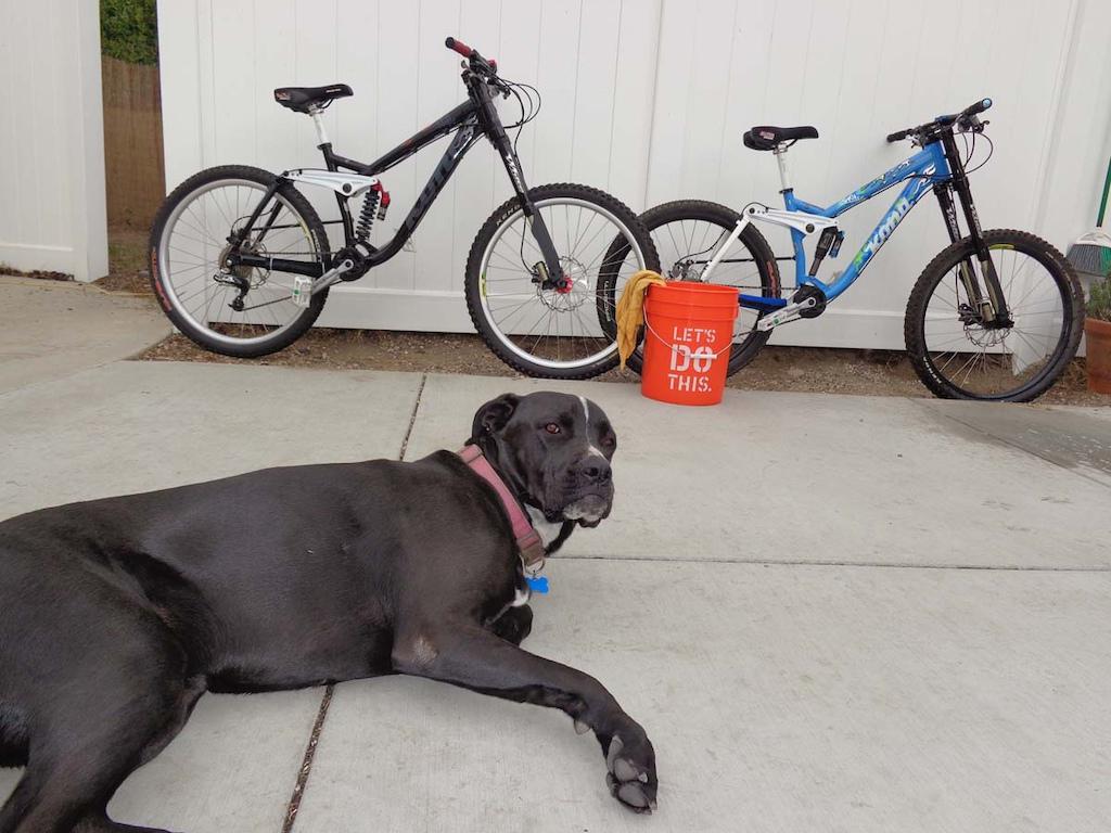 bike security-p5pb11656247.jpg