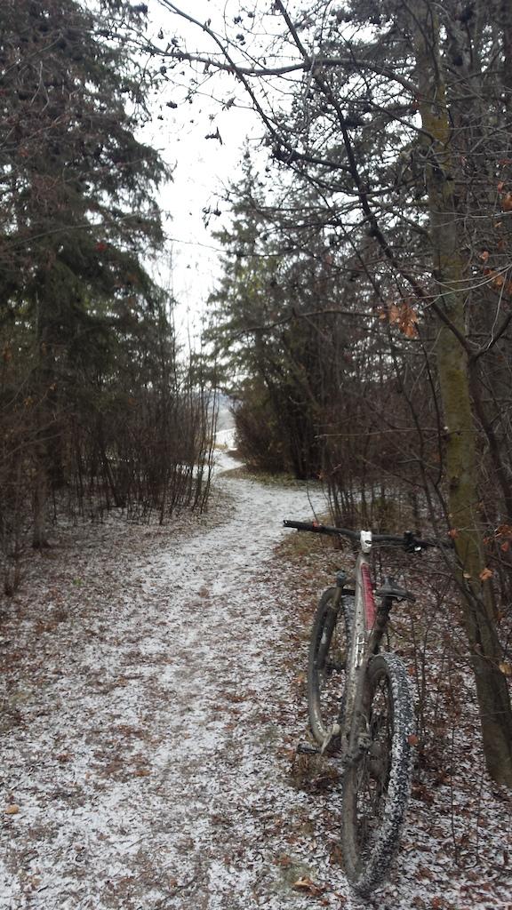 Edmonton Fall/Winter 2016-p5pb14169716.jpg