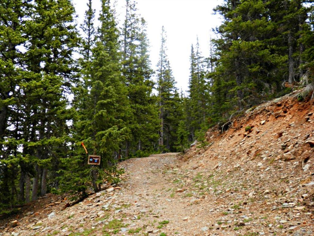 The NM Trail Pix Thread-p6055738.jpg