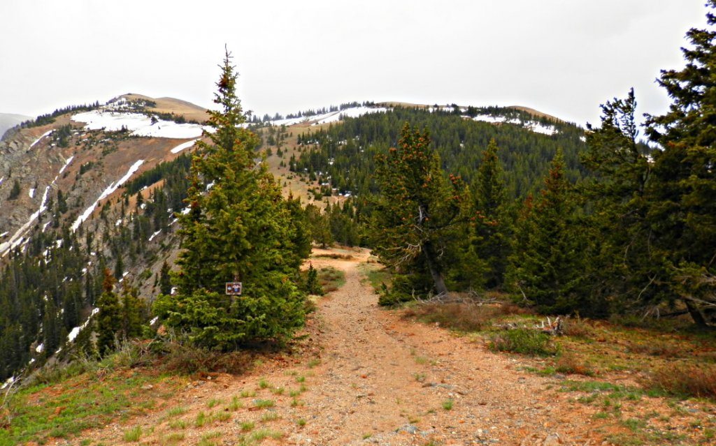The NM Trail Pix Thread-p6055755.2.jpg