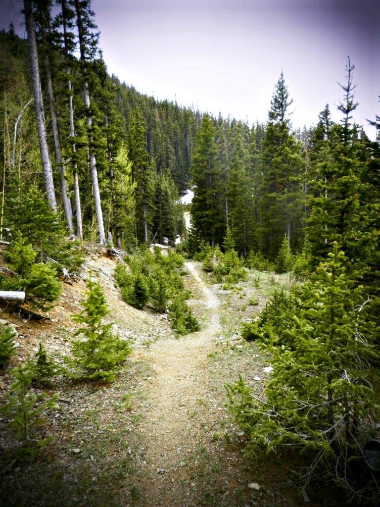 The NM Trail Pix Thread-p6055803.2.jpg