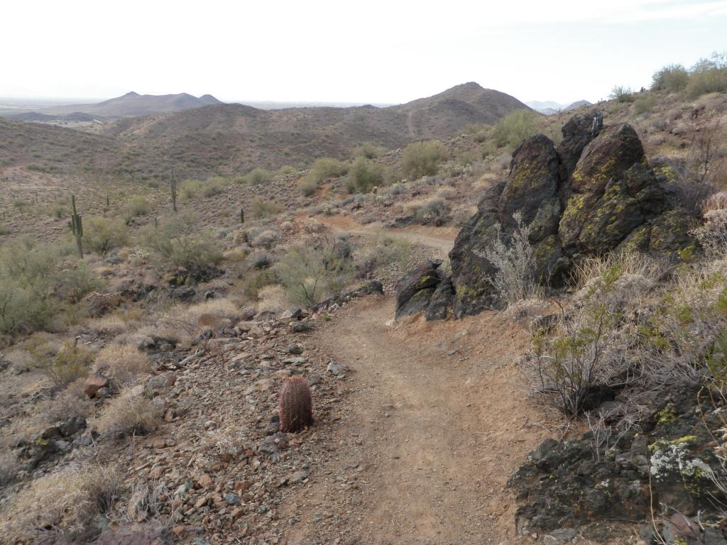 Sonoran Trail System in North Phoenix-p6190206.jpg
