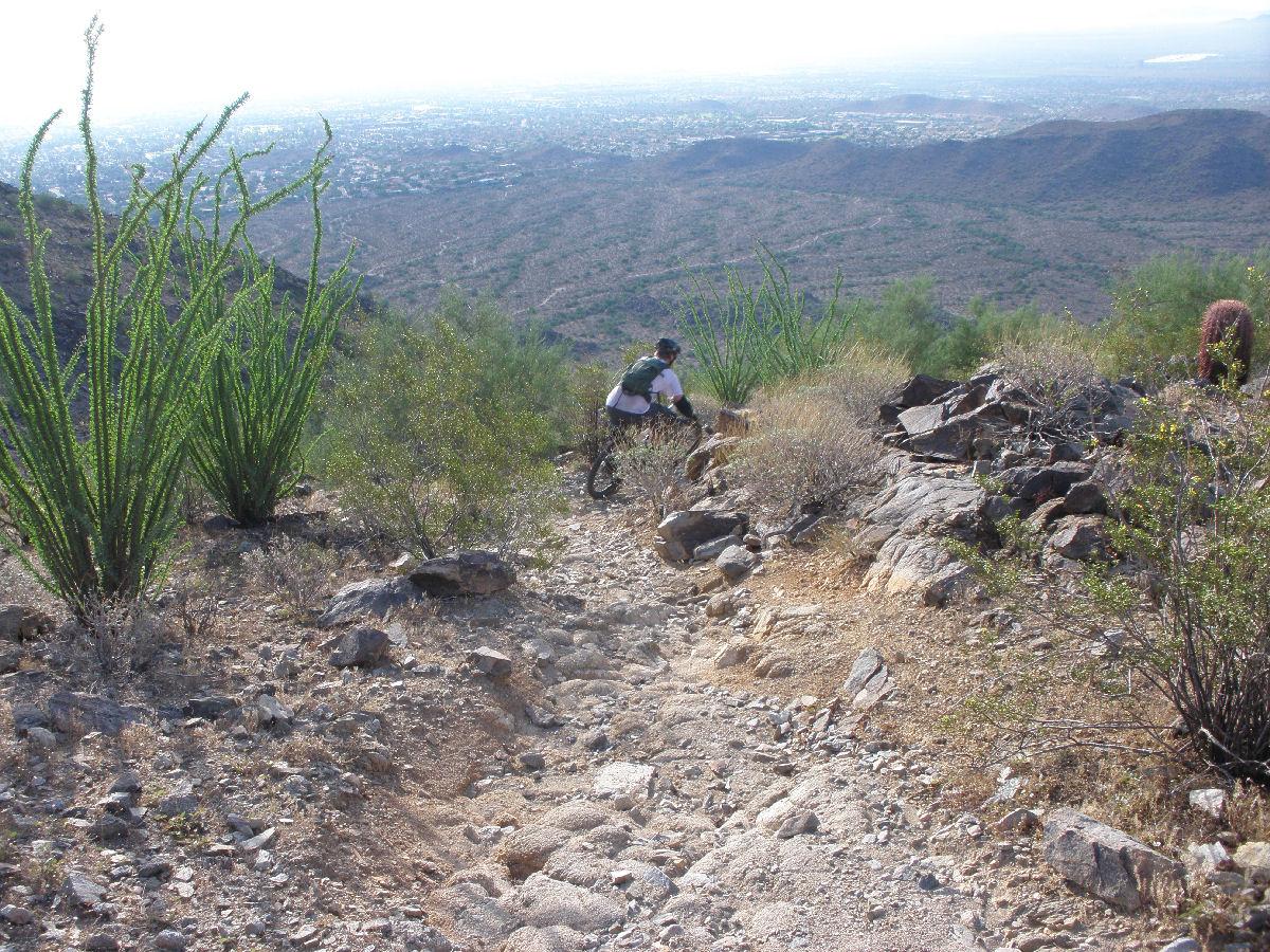 Pics from SoMo Corona De Loma trail!-p8220047mtbr.jpg