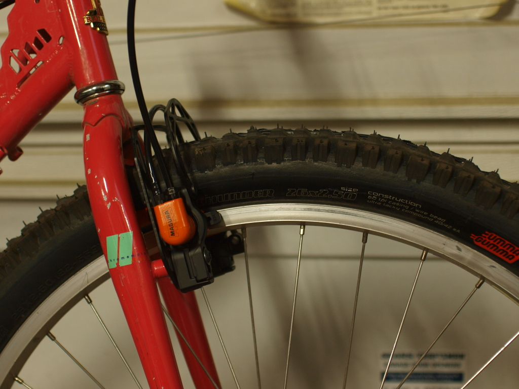"Raleigh ""The Edge""-p9056099sm.jpg"