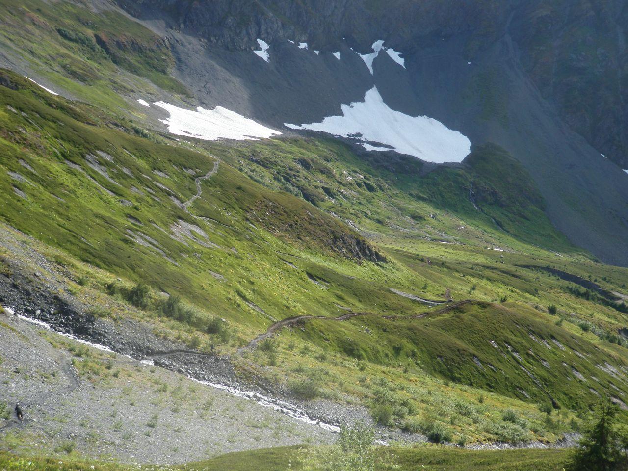 Alyeska downhill trails-p9060839.jpg