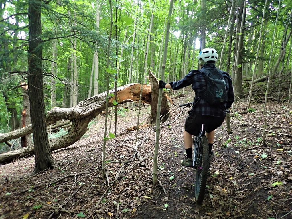Local Trail Rides-p9075464.jpg