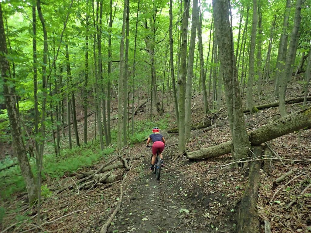 Local Trail Rides-p9075475.jpg