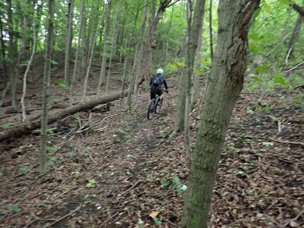 Local Trail Rides-p9075486.jpg