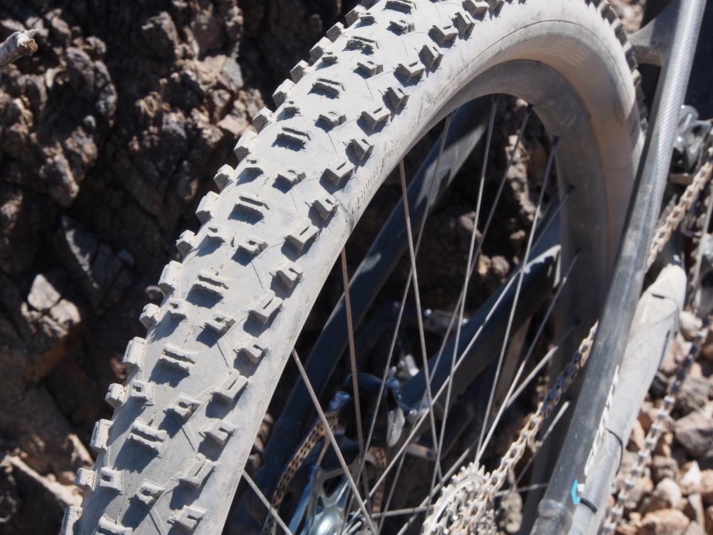 Scott Genius 700 Nobby Nic tire
