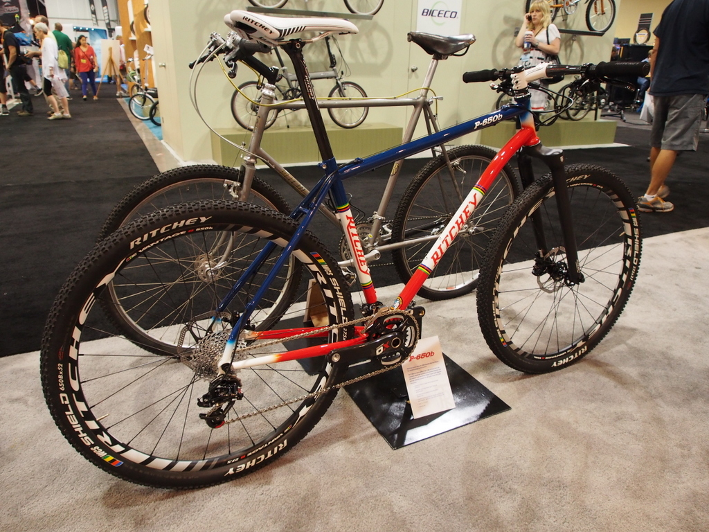 Ritchey P-650b Bike
