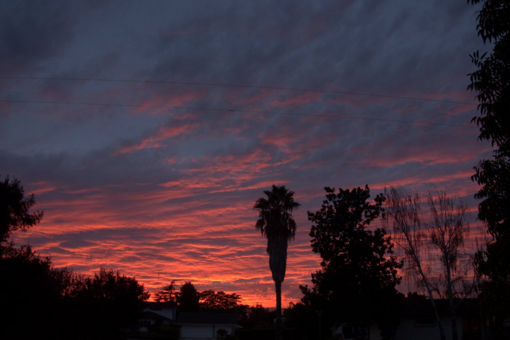 Sunrise or sunset gallery-p9300025.jpg
