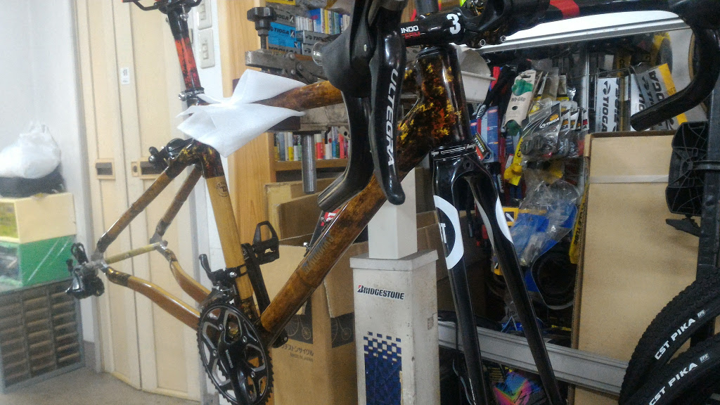 Bamboo, wood, carbon, gold road frame-p_20170727_150748.jpg