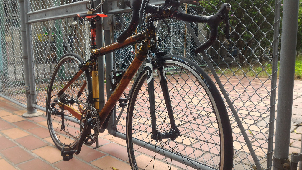 Bamboo, wood, carbon, gold road frame-p_20170729_150856.jpg