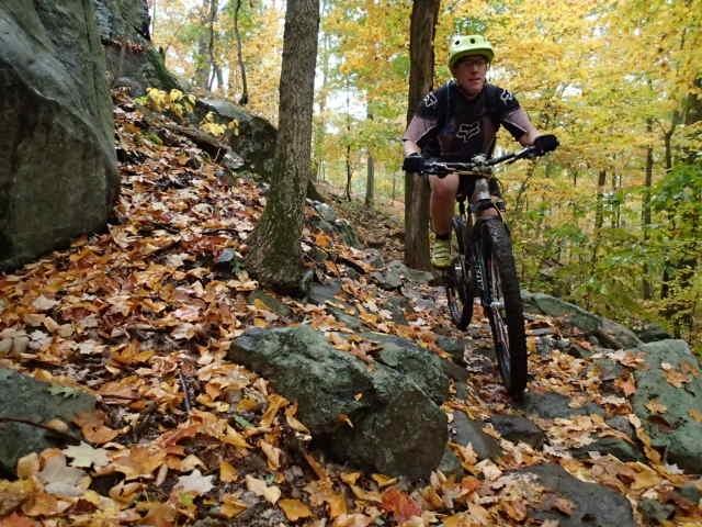 Post Pics of your Fall Foliage!!-pa055286.jpg
