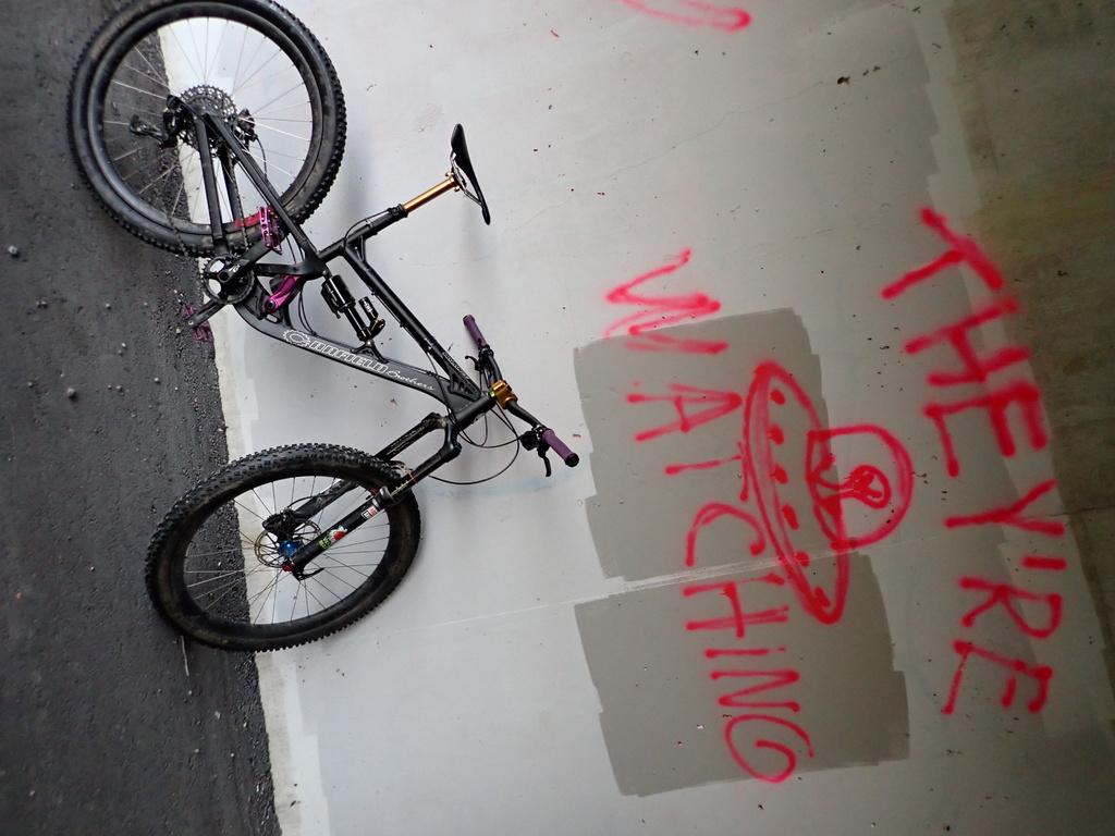 Local Trail Rides-pa080464.jpg