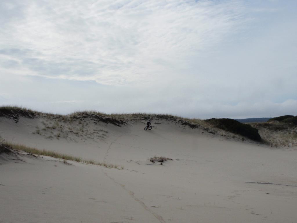 Beach/Sand riding picture thread.-pa130199.jpg