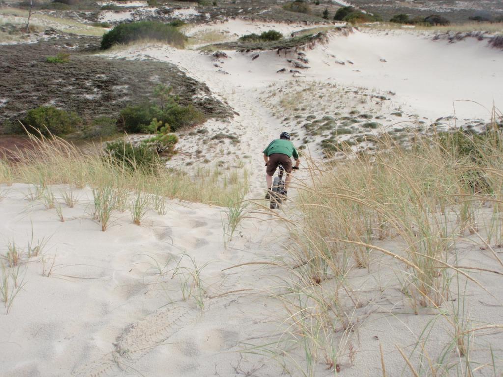 Beach/Sand riding picture thread.-pa130215.jpg