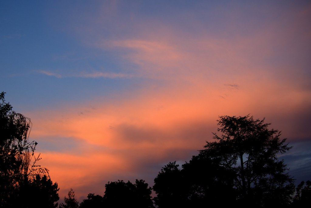 Sunrise or sunset gallery-pa140002-001.jpg
