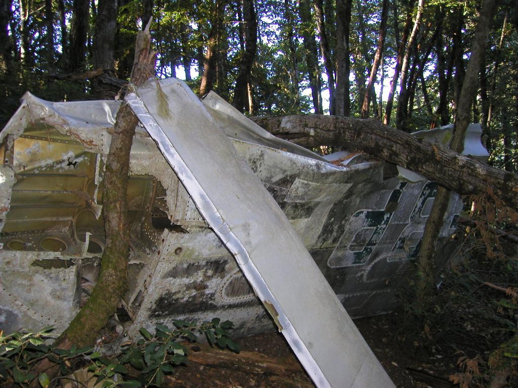 Resolution Trail (Skegg's) Plane Crash Footage-pa210003.jpg