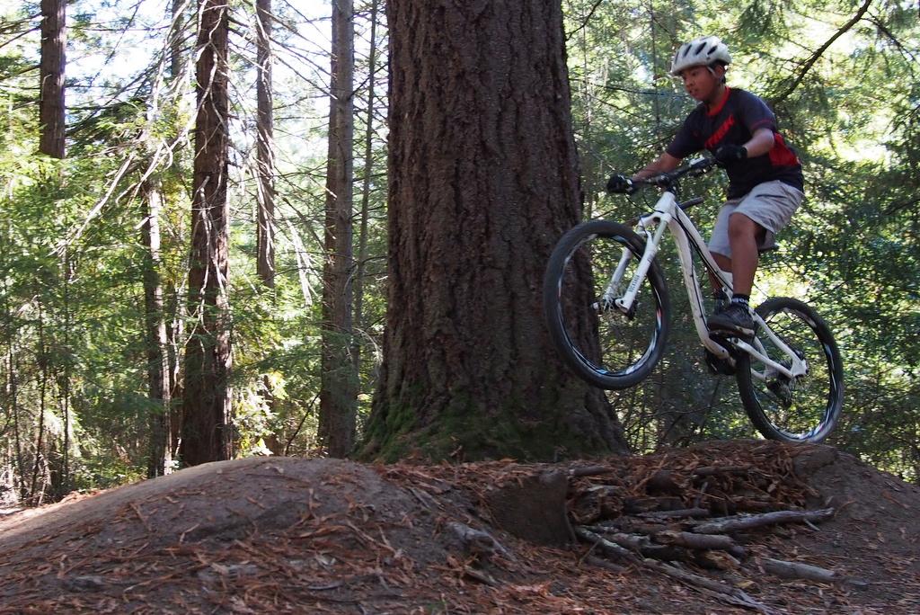 27.5 All Mountain Bike Shootout-pa270148.jpg