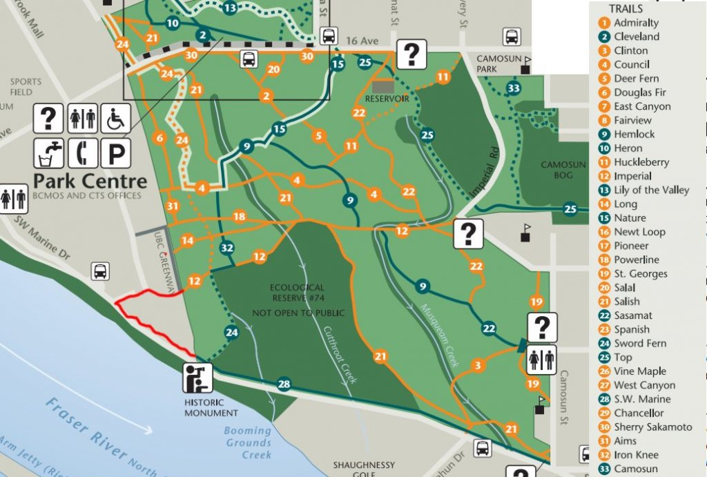 novice and kid friendly trails?-pacific-spirit-park-south.jpg