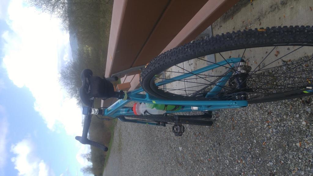 Post your 'cross bike-paige-2-resized.jpg