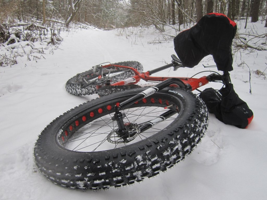 ok so I bought a fat bike-palgrave-16-c-003.jpg