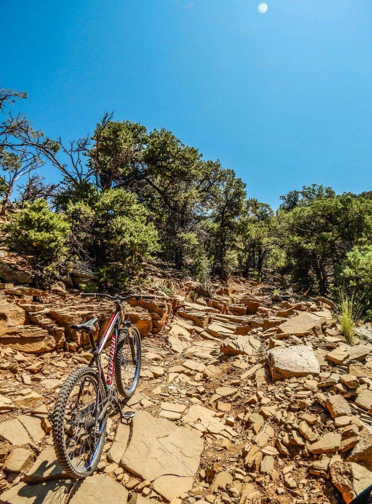 The NM Trail Pix Thread-panorama-333.jpg