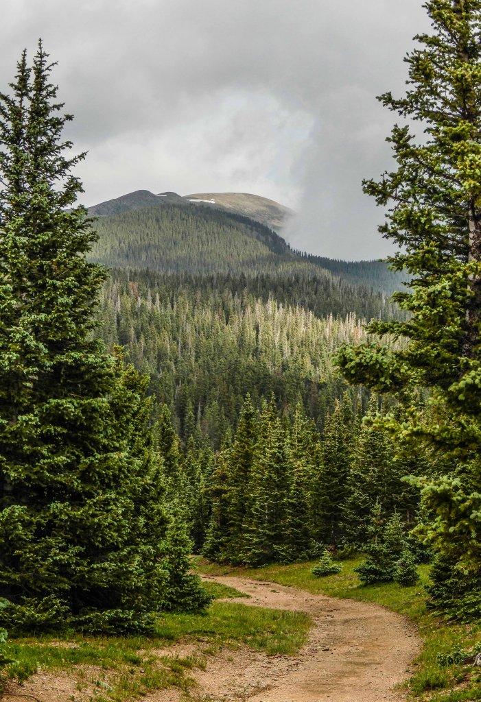 The NM Trail Pix Thread-panorama-4.jpg