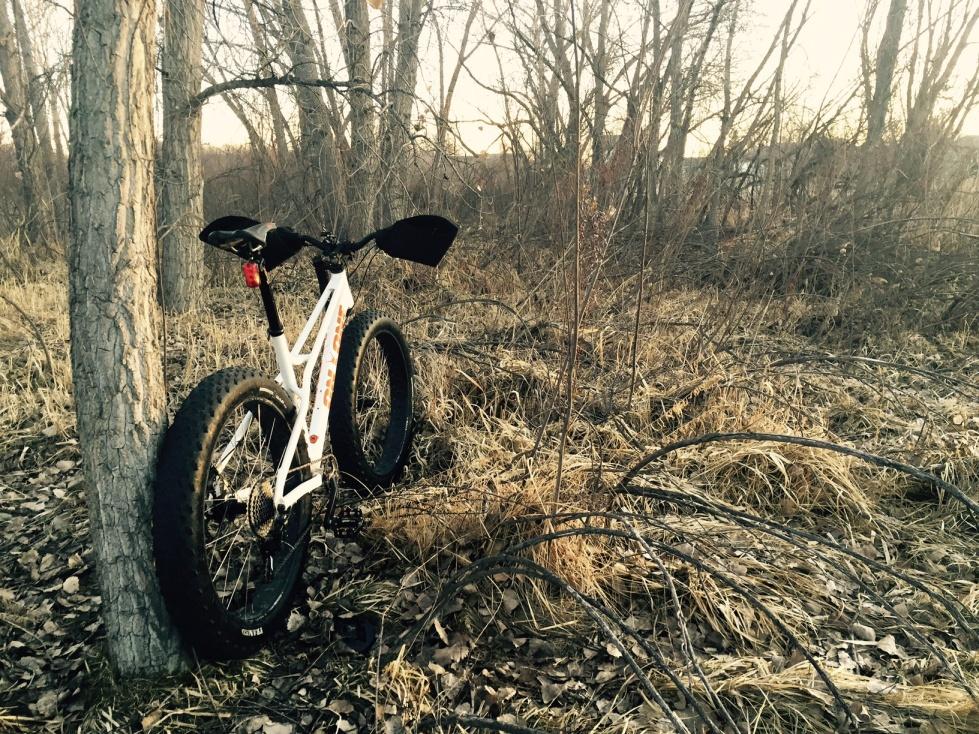 Fat bike - Every day/week reliable trail/fun bike?-park.jpg