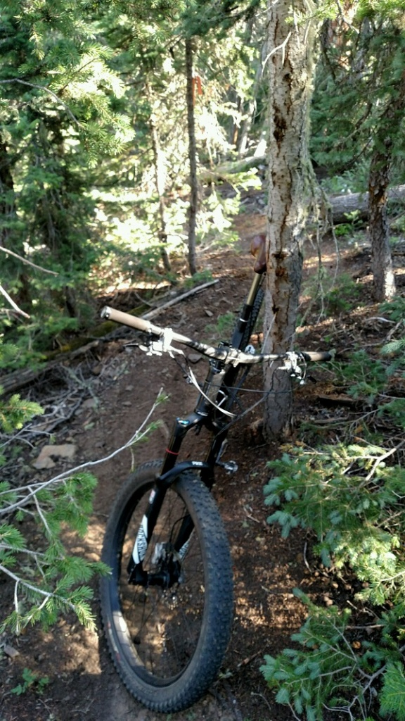 The All Mountain Hardtail Thread. Post up yours.-part_1472675519709_img_20160814_085217832.jpg