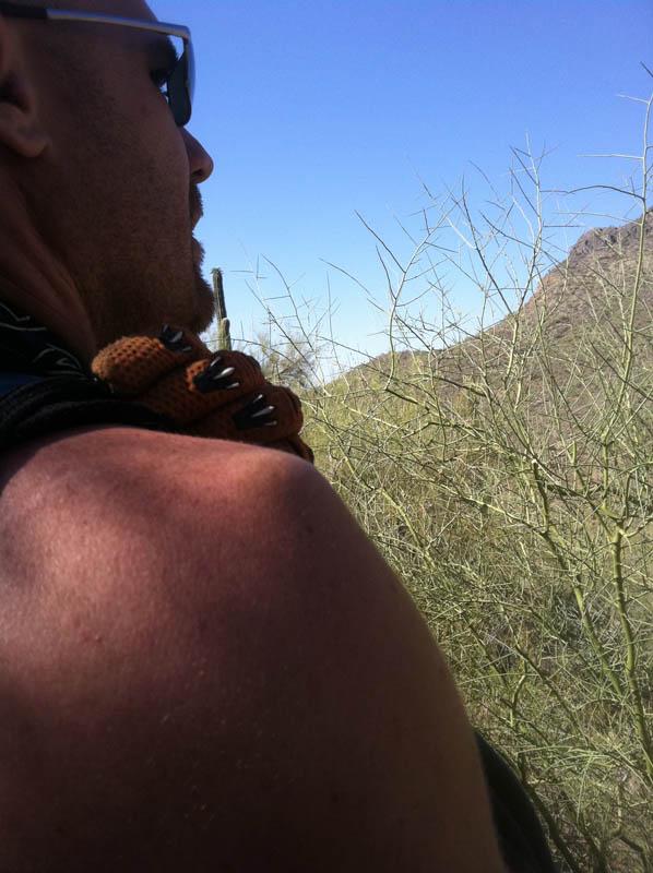 Rehab broken shoulder-pass_mountain_05.jpg