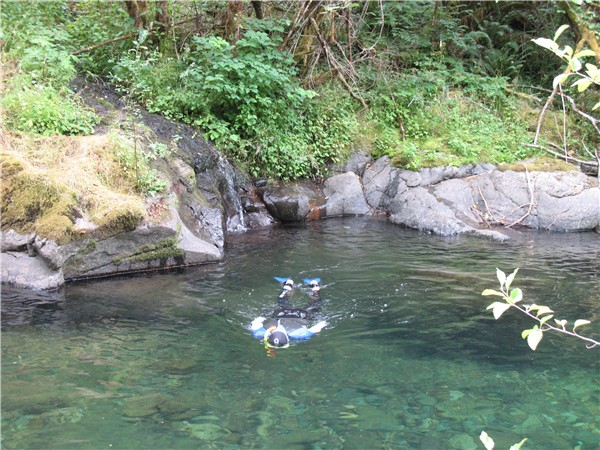 Some Swimming Holes Along Brice Creek