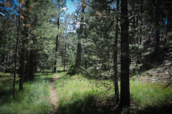 Intro to Bikepacking: Mogollon Rim - July (12) 13-14-payson-18.jpg
