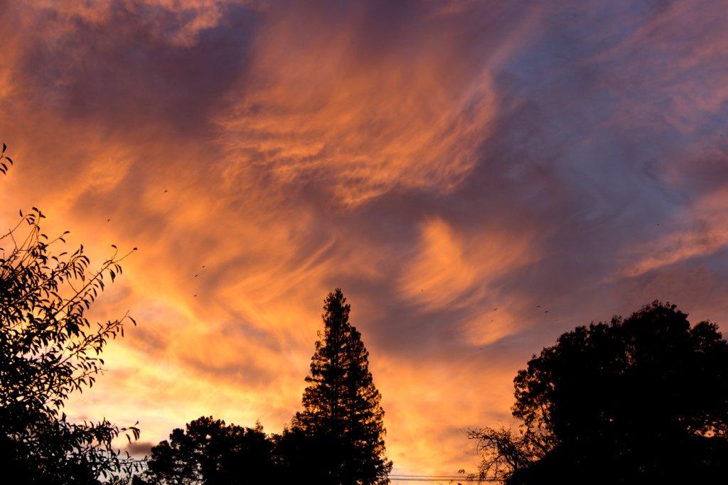 Sunrise or sunset gallery-pb110122.jpg