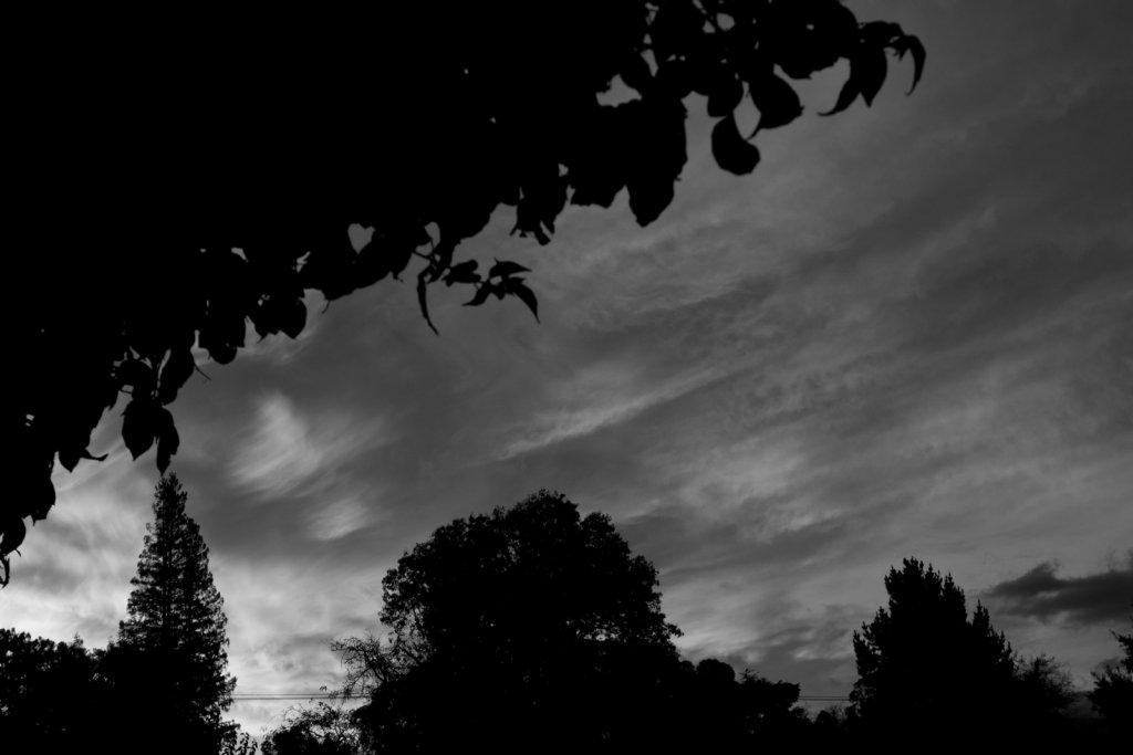 Sunrise or sunset gallery-pb110124.jpg